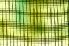 Abstraktes Foto verwischt vom Moskitodrahtschirm Lizenzfreie Stockbilder