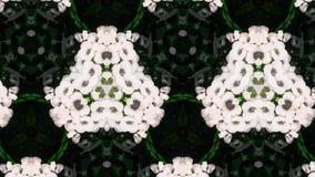 Abstraktes Fotomuster der weißen Blume Stockfoto