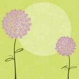 Abstraktes Frühjahr purpurrote Hydrangeablume Stockbild