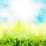 Abstraktes Frühlingsplakat mit glänzender Sonne und unscharfem Hintergrund Stockfotos