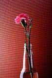 Abstraktes Gartennelken-Hintergrund-Design stockbild