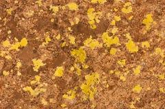 Abstraktes gelbes andbackground reiches Weinleseschmutzhintergrund-Beschaffenheitsluxusdesign mit eleganter antiker Farbe auf Wan Lizenzfreie Stockbilder