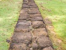 Abstraktes Gitter deckt Felsenmusterpflasterung und -gras mit Ziegeln Stockfotos