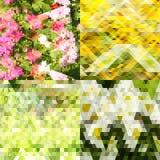 Abstraktes grünes backgraund Stockfotos