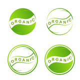 Abstraktes grünes Blattlogo Betriebsnetz Ikone auf weißem Hintergrund Grafikdesign eco Symbole in den Kreisen Eco-Design-Schablon Stockbilder