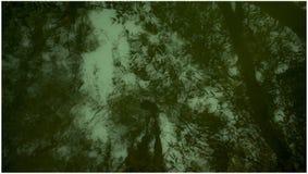 Abstraktes grünes Wasser! stockbild