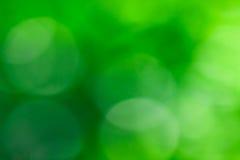 Abstraktes Grün unscharfer Hintergrund, natürliches Bokeh Stockfotografie