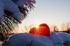 Abstraktes Herz auf den Niederlassungen bedeckte Schnee in Lizenzfreie Stockfotos