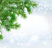 Abstraktes Hintergrundmuster der weißen Sterne auf dunkelroter Auslegung Grüner Tannenzweig, Schneehintergrund Lizenzfreies Stockfoto
