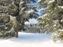 Abstraktes Hintergrundmuster der weißen Sterne auf dunkelroter Auslegung Hintergrund des neuen Jahres Winterurlaub Stockbilder
