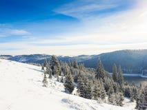 Abstraktes Hintergrundmuster der weißen Sterne auf dunkelroter Auslegung Hintergrund des neuen Jahres Winterurlaub Stockbild