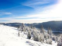 Abstraktes Hintergrundmuster der weißen Sterne auf dunkelroter Auslegung Hintergrund des neuen Jahres Winterurlaub Lizenzfreies Stockfoto