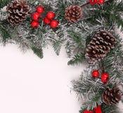 Abstraktes Hintergrundmuster der weißen Sterne auf dunkelroter Auslegung Niederlassung des Weihnachtsbaums mit Kiefernkegeln Stockfotografie