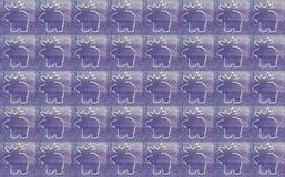 Abstraktes Hintergrundmuster der weißen Sterne auf dunkelroter Auslegung Weiße Rene auf violettem Hintergrund Lizenzfreies Stockfoto