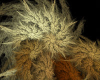 Abstraktes künstliches computererzeugtes wiederholendes Flamme Fractal-Kunstbild eines gewundenen Shells Stockfotografie