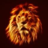 Abstraktes, künstlerisches Löweporträt Feuer flammt Pelz Stockbilder