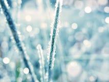 Abstraktes Lichtgirlande des Hintergrundes Weiche unscharfe Weihnachts Lizenzfreies Stockfoto