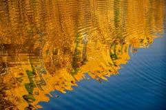 Abstraktes Muster geschaffen durch die Kräuselungen Stockbild