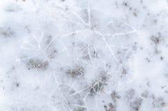 Abstraktes Muster im Winter Stockfotografie