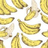 Abstraktes nahtloses Muster, Tapete, Hintergrund, Hintergrund Gelb mit weiße Hand gezeichneter Banane Vektorskizze, tropisch Stockbilder
