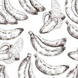 Abstraktes nahtloses Muster, Tapete, Hintergrund, Hintergrund Weiß mit schwarze Handgezeichneter Banane Vektorskizze, tropisch Lizenzfreie Stockfotos