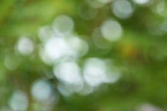 Abstraktes natürliches bokeh Lizenzfreies Stockbild