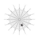 Abstraktes Spiderweb auf weißem Hintergrund stockbild