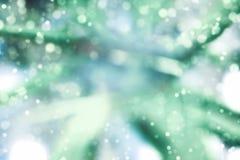 Abstraktes Unschärfe bokeh grün-blaue Farbschneetapete Lizenzfreie Stockfotos
