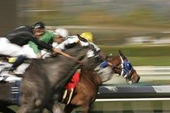 Abstraktes Unschärfen-Pferden-Rennen Stockfotografie