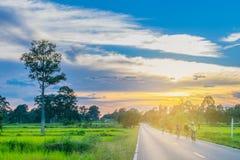 Abstraktes Weiche verwischt und Weichzeichnungsschattenbild der Sonnenuntergang, Feld des ungeschälten Reises, Leute, die das Fah Lizenzfreie Stockbilder