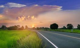 Abstraktes Weiche verwischte das Schattenbild der Sonnenaufgang, die Straße, das grüne Feld des ungeschälten Reises mit dem schön Stockfotografie
