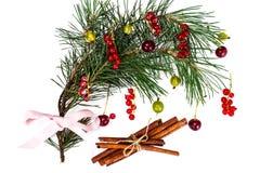 Abstraktes Weihnachtsnatürlicher Hintergrund im Weiß Lizenzfreie Stockbilder
