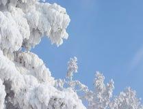 Abstraktes Winterfeld Stockfotos