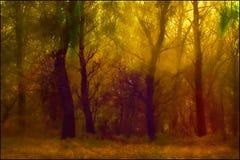 Abstraktion av skogar med konstiga färger arkivfoton