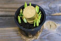 Abstraktion des Erhaltens des Geldes für wachsendes Grün Stockbilder