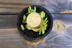 Abstraktion des Erhaltens des Geldes für wachsendes Grün Lizenzfreies Stockfoto