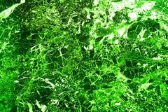 Abstraktion, ein hell glühender grüner Wald Stockbilder