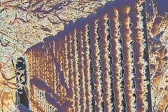 Abstraktion an einem kalten Tag des Winters in einem Nationalpark Lizenzfreie Stockfotografie