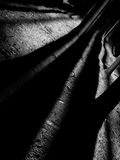 Abstraktion im Wald, ein Spiel des Lichtes und Schatten I Lizenzfreies Stockfoto