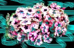 Abstraktion mit Blumenstrauß der weißen Flammenblume Lizenzfreie Stockfotos