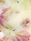 Abstraktion mit gefrorener Blumentulpe Stockfotografie