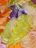 Abstraktion mit grünem Blatt im Eis Lizenzfreie Stockfotos