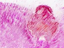 Abstraktion mit schönem rosa Eis Lizenzfreie Stockfotos