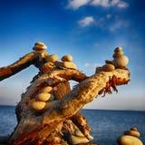 Abstraktion vid havet och att bestå av stenar och filialer royaltyfri fotografi