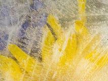 Abstraktion von den gefrorenen weißen Blumenblättern Stockfotografie