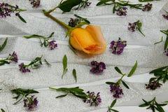 Abstraktion von kleinen violetten Blumen auf einem silbernen Band Lizenzfreie Stockfotografie