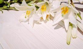 Abstraktionsabbildung für Hochzeit Lilien auf weißem hölzernem Hintergrund Lizenzfreie Stockbilder