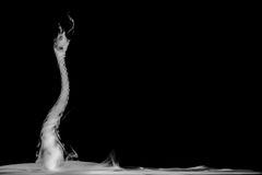 Abstraktionsrosen des Rauches auf einem schwarzen Hintergrund Stockbilder