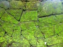 Abstrax grön gammal vägg Arkivbild