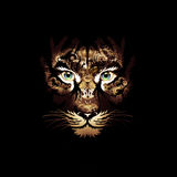 Abstrect tiger face Royalty Free Stock Images